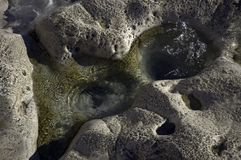 Bowls carved by water in the stone Royalty Free Stock Photo