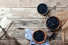 Bowls with forest blueberry Stock Images