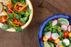 Bowls of fresh vegetable salad Royalty Free Stock Image