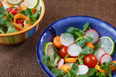 Bowls of fresh vegetable salad Royalty Free Stock Photo