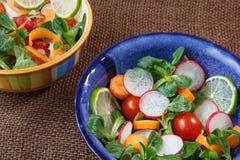 Bowls of fresh vegetable salad Royalty Free Stock Photo