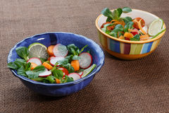 Bowls of fresh vegetable salad Royalty Free Stock Photos