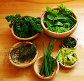 Bowls of herbs. Herb leaves in wooden bowls arranged in a circle stock photos