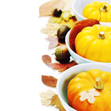 Bowls with pumpkins Stock Image