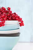 Bowls and red currants Royalty Free Stock Image