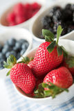 Bowls of ripe summer berries Stock Images