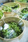 Bowls of salad keaves Royalty Free Stock Photos