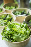 Bowls of salad leaves Stock Photos