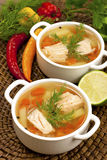 Bowls with salmon soup and veggies Stock Images