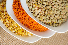Bowls of various legumes (red turkish lentils, yellow indian lentils, green lentils) on rustic burlap background Royalty Free Stock Photos