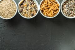 Bowls with whole grain carbohydrates, oats, brown rice, seeds, quinoa and whole grain pasta. Whole grain cereals. Bowls with whole grain carbohydrates, oats Royalty Free Stock Photos