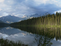 Bowman Lake at Glacier National Park. Photo of Logging Lake taken late afternoon with cloudy skies and pine trees on its shore Stock Photo