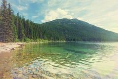 Bowman lake Royalty Free Stock Image
