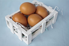 Bown eggs in a crate Stock Photography
