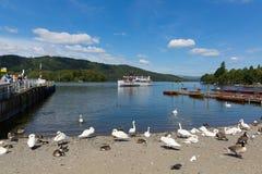 Bowness auf Windermere Süd-Lakeland Cumbria Großbritannien auf den Banken von See Windermere Stockbild
