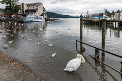 BOWNESS NA WINDERMERE, jezioro DISTRICT/ENGLAND - SIERPIEŃ 20: Łodzie Fotografia Stock