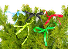 Bows from satiny tapes Royalty Free Stock Images