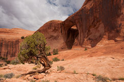 Bowtie Arch. The small Bowtie Arch high above in a remote monolithic landscape near Moab, Utah Royalty Free Stock Photography