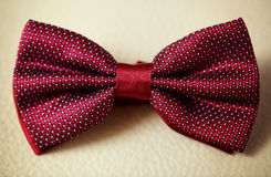 Bowtie tux. Red bowtie groom on yellow leather Royalty Free Stock Image