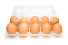box ägg Arkivbild