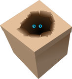 Box. Vector illustration - box with a surprise Stock Photo