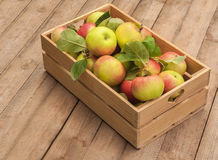 Box of apples on wooden table Royalty Free Stock Image