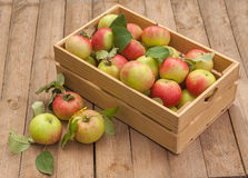 Box of apples on wooden table Royalty Free Stock Photos