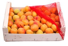 Box with apricots Royalty Free Stock Image