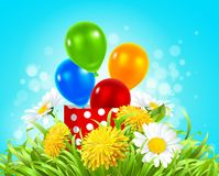 Box with balloons in the grass with daisies, dandelions and camomile. Vector illustration of a box with balloons in the grass with daisies and dandelions Royalty Free Stock Image
