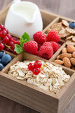 Box with breakfast items - oatmeal, muesli, nuts, berries Stock Images