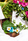 Box with camomiles and leaves. Old brown box decorated with camomiles and fresh leaves in a white tablecloth royalty free stock image