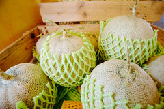 Box of cantalope melons at the farmers market Stock Photos