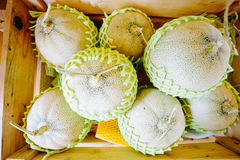 Box of cantalope melons at the farmers market Royalty Free Stock Image
