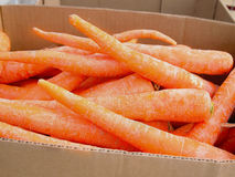 Box of Carrots royalty free stock image