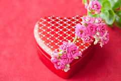 Box of chocolates and flowers for Valentines day. Royalty Free Stock Photos