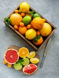 Box with citrus fresh fruits. On a concrete background royalty free stock photography