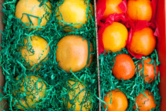 Box with citrus fruits - oranges, grapefruits and  Royalty Free Stock Photo