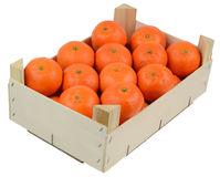 Box of clementines Stock Photography