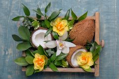 Box with coconuts and flowers. On wooden background Royalty Free Stock Images