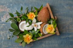 Box with coconuts and flowers. On wooden background Stock Photo