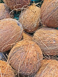 A box of coconuts. On a shop Royalty Free Stock Photography