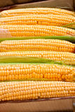 Box with corn Stock Images