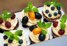 Cupcakes in a box Royalty Free Stock Photos