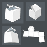 Box with Die Cut Template. Packing box For Food, Gift Or Other Products. Royalty Free Stock Image