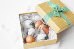 Box with Easter eggs and feathers Stock Image