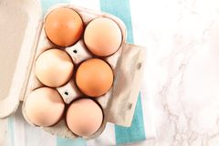 Box with egg stock photography