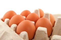 Box eggs Royalty Free Stock Image