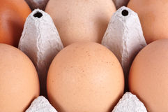 Box of Eggs Royalty Free Stock Photos