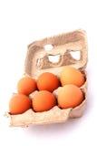 box eggs Стоковая Фотография