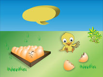 Box of eggs and chicken on green field. Box of eggs and chicken vector illustration